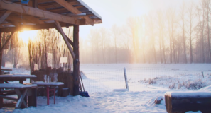 Õuemängud dokfilm by Plank Film
